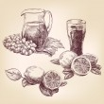 Fruit collection vintage hand drawn vector illustr...