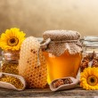 Still life with honey, honeycomb, pollen and propo...