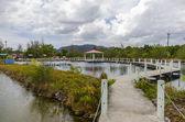 Rybí farma rybníky v Thajsku