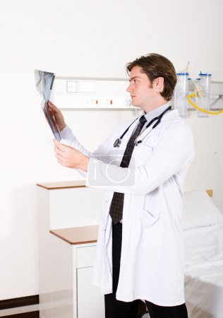 Young male doctor looking at x-ray in hospital ward