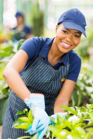 Young african american nursery worker gardening