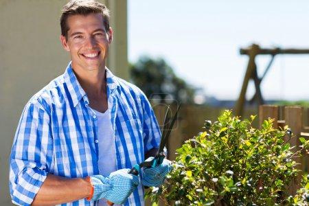 Happy man shearing shrub
