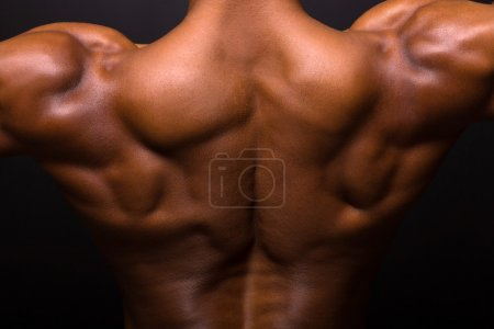 Photo for African muscular bodybuilder's back on black background - Royalty Free Image