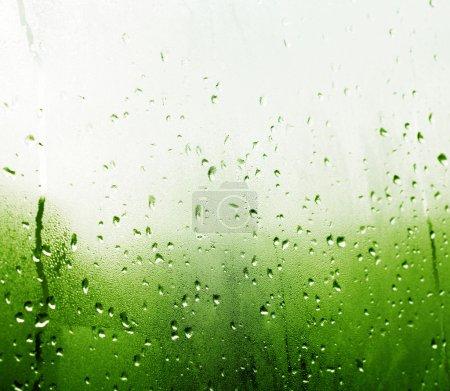 Photo pour Gouttes de pluie sur une fenêtre - image libre de droit