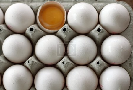 Photo for Lots of eggs close up - Royalty Free Image