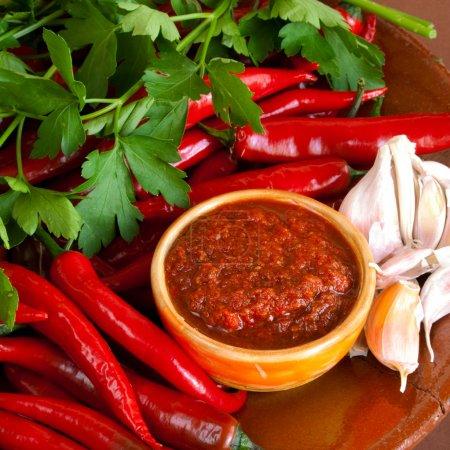 Photo pour Ingrédients et cru sauce caucasien chaud adjika - image libre de droit