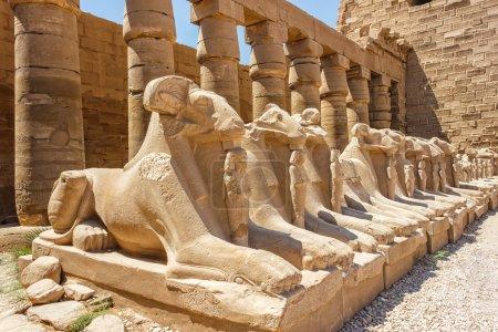 ruines du temple de karnak en Egypte