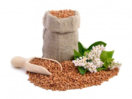 Buckwheat bag and flowers isolated....