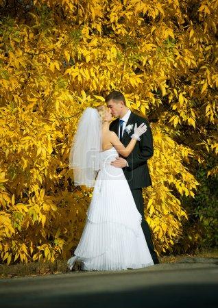 Photo pour Couple nouvellement marié - image libre de droit