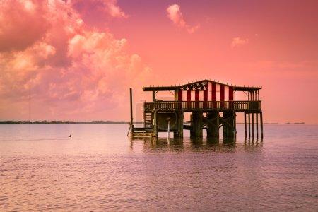 Florida Stilt House