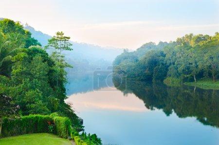 Photo pour Magnifique matin sur les rives de la rivière tropicale - image libre de droit