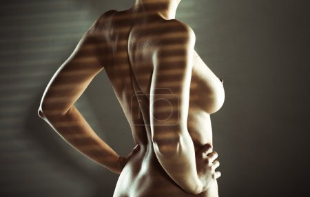 Sexy naked woman standing in striped shadow