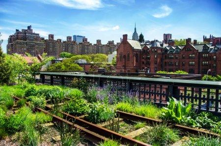 Foto de Línea de alta. Parque público urbano en un flete histórico ferrocarril línea, Nueva York, manhattan. - Imagen libre de derechos