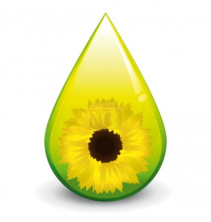 Biodiesel sunflower oil droplet vector