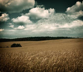 Fantasy Landscape with Field, Moon and Clouds