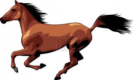Illustration pour L'illustration montre un beau cheval qui court, vole crinière et queue. Illustration isolée sur fond blanc . - image libre de droit