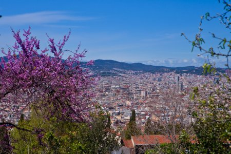 Barcelona, Catalan, Catalonia, Spain,spring, architecture, view, interesting detail