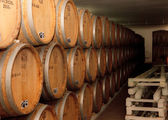 Wine cellar, barrels, aging, wine, winemaker, wood, tasting