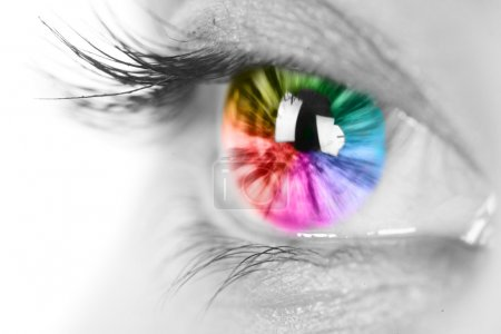 Photo for Colorful eye - Royalty Free Image