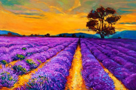 Photo for Original oil painting of lavender fields on canvas.Sunset landscape.Modern Impressionism - Royalty Free Image