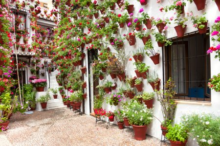 Photo for Spring Flowers Decoration of Old House  Patio, Cordoba, Spain, Europe - Royalty Free Image