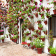 Spring Flowers Decoration of Old House  Patio, Cor...