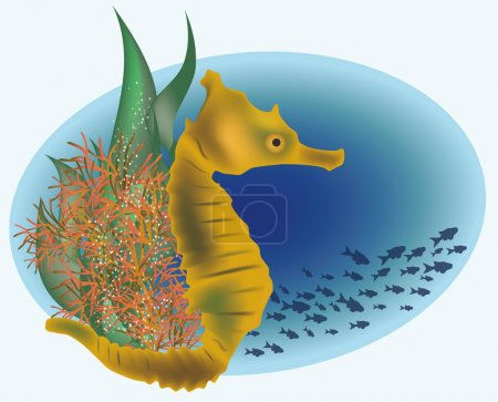 Marine life with sea horse, vector illustration