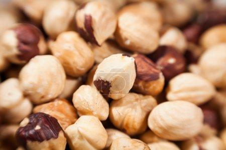 Hazelnut macro