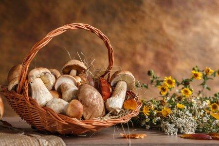 Still life with basket of mushrooms