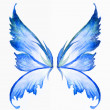 Blue fairy wings watercolor hand draw painting...