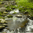 Постер, плакат: Summer cascades in Tremont at Great Smoky Mountains National Par