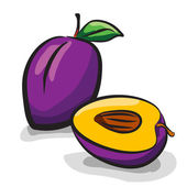 Plum fruits sketch drawing vector set