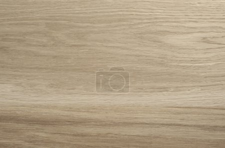 Texture of light wood boards