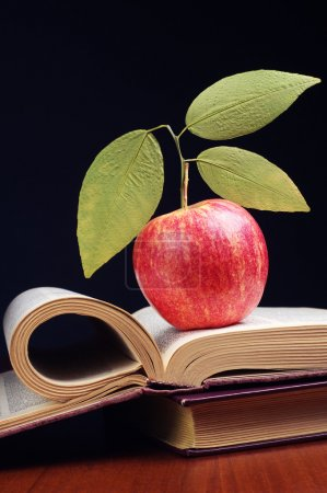 Opened book and apple