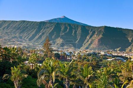 Photo for Teide Mountain Peak from Puerto de la Cruz, Tenerife - Royalty Free Image