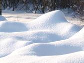 čerstvá sněhová pokrývka