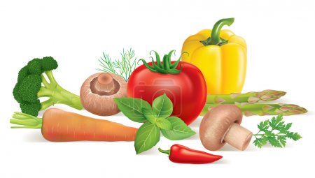 Illustration for Vegetable set. Contains transparent objects. EPS10 - Royalty Free Image