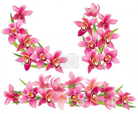 Illustration for Garland of orchids. Contains transparent objects. EPS10 - Royalty Free Image