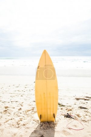 Surfboard standing upright in sand