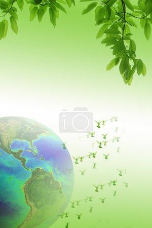 Photo pour Colombes sur le fond monde paix et liberté concept (l'image de la terre est fournie par la Nasa) - image libre de droit
