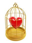 Zlatá klec a srdce