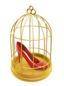 Zlatá klec a boty