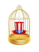 Zlatá klec a klobouk z usa
