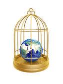 Zlatá klec a země
