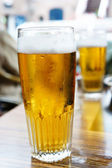 Vychlazené pivo