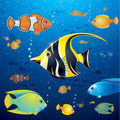 Underwater Background with Colorful Tropical Fishes Vector