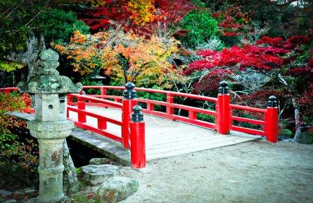 Bridge and Autumn Colours in Miyajima Japan