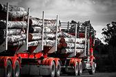 Logging Truck - Tasmania