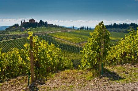 vue panoramique du paysage de Toscane
