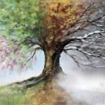 Digital illustration of four season tree....